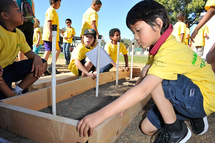 Elementary school students work in garden