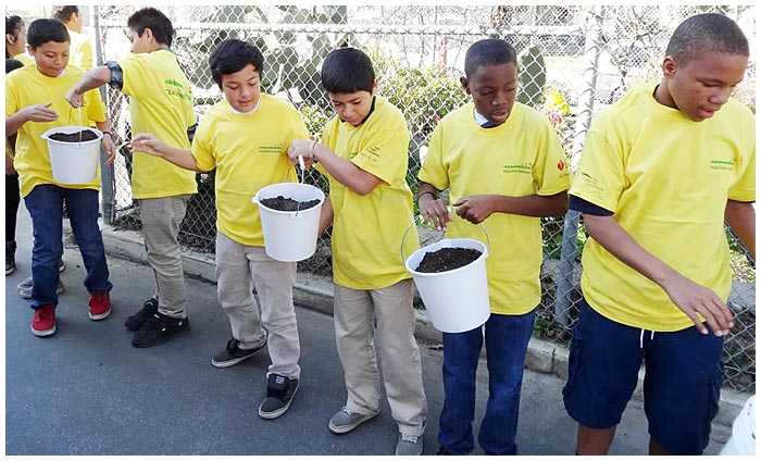 Photo - Gardens Take Root at Cubberley, Prisk