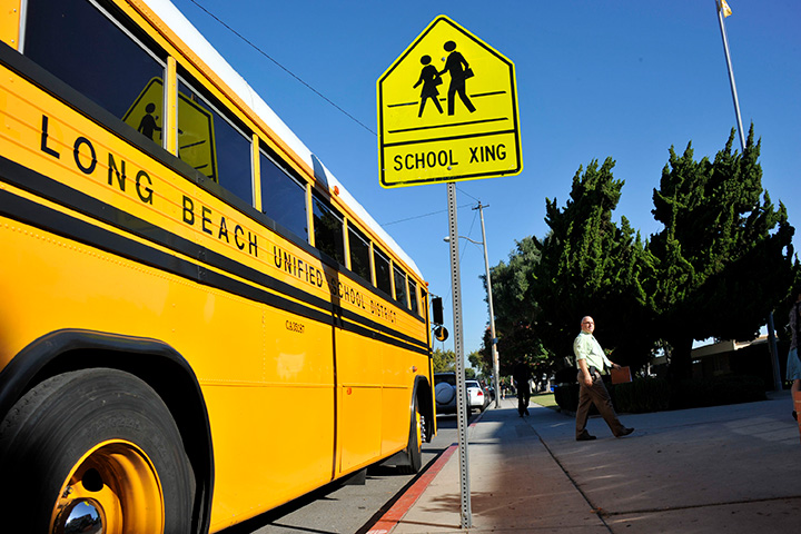 Bus and School Crossing Sign