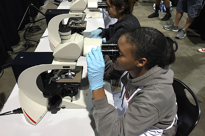 Student looks through a microcope